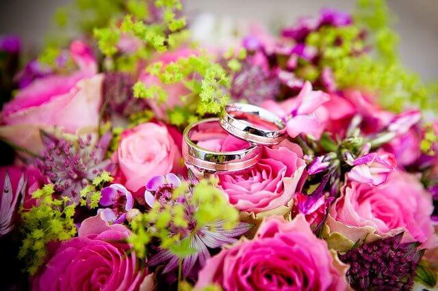 和歌山県の結婚相談所を徹底比較