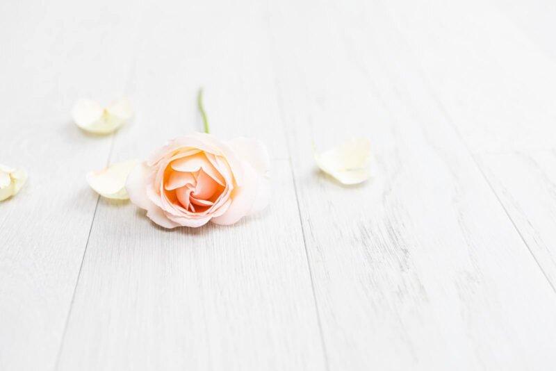 茨城県で人気の地域密着型の結婚相談所6選